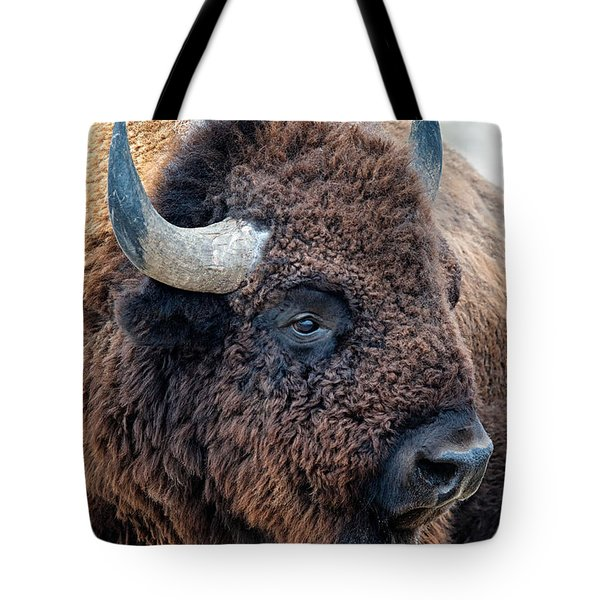 Tote Bag featuring the photograph Olena Art Bison The Mighty Beast Bison Das Machtige Tier North American Wildlife  by OLena Art Brand