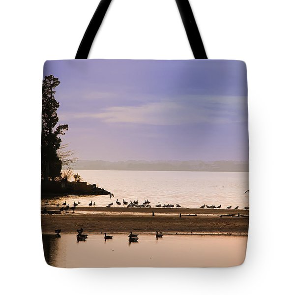 In The Quiet Morning Tote Bag by Bill Cannon