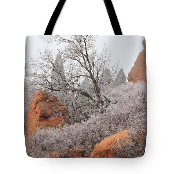 In The Quiet Of The Fog 4 Tote Bag by Diane Alexander