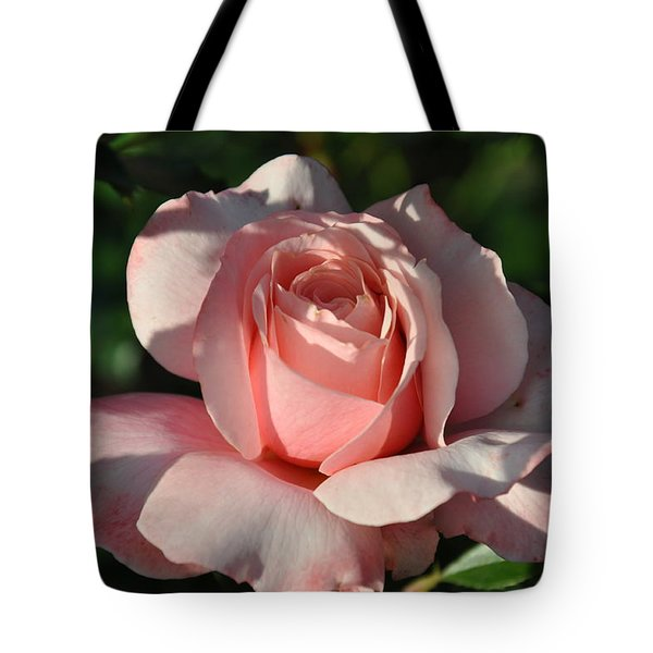 Tote Bag featuring the photograph In The Shade by Sabine Edrissi