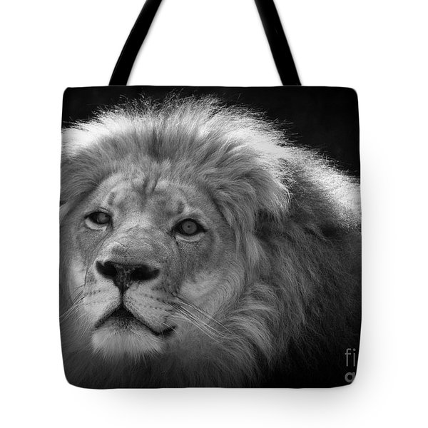 In The Shadows 3 Tote Bag by Lisa L Silva