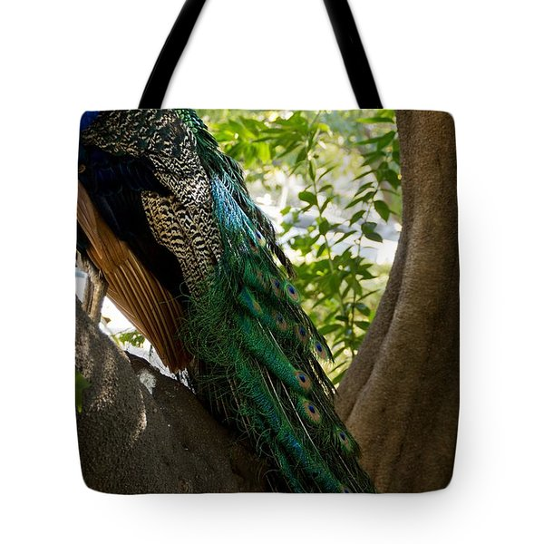 In The Shadows Tote Bag by Peggy Hughes