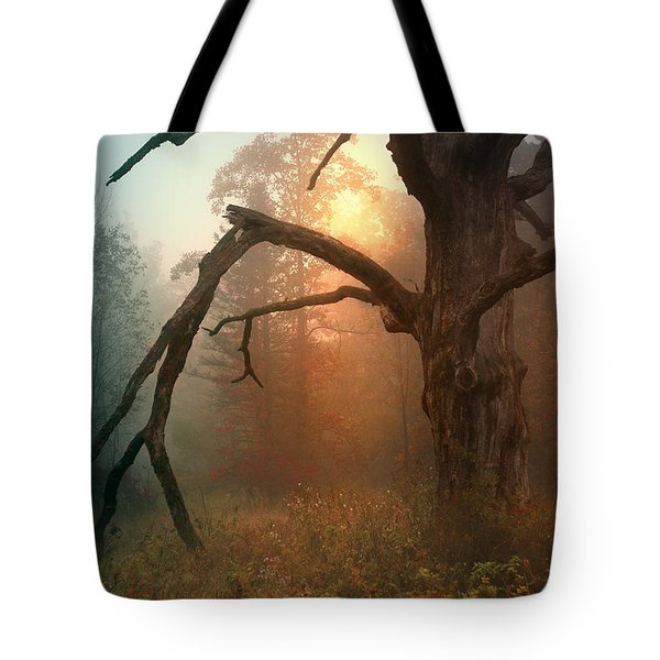 In The Stillness Tote Bag by Rob Blair