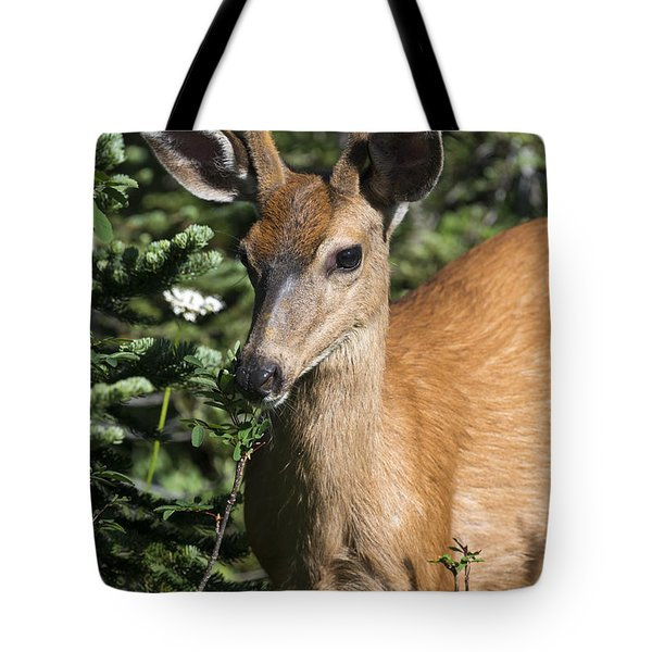 In Velvet Tote Bag