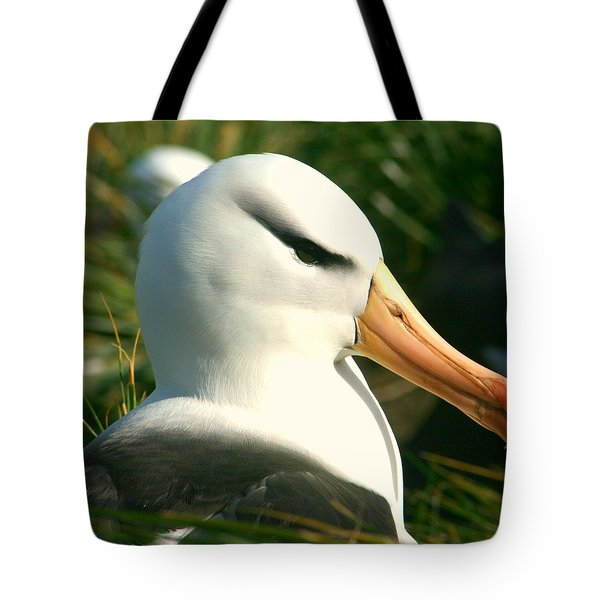 Tote Bag featuring the photograph In Waiting by Amanda Stadther