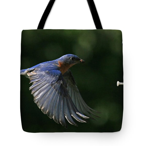 Incoming Tote Bag by Douglas Stucky