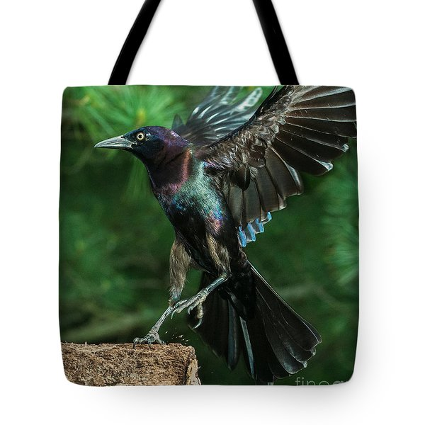 Incoming Grackle Tote Bag by Jim Moore