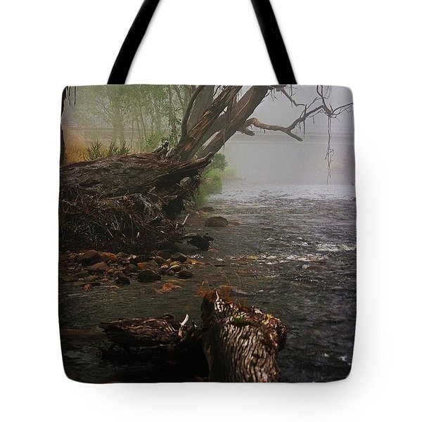 Indeed It Was A Mystical Place Tote Bag