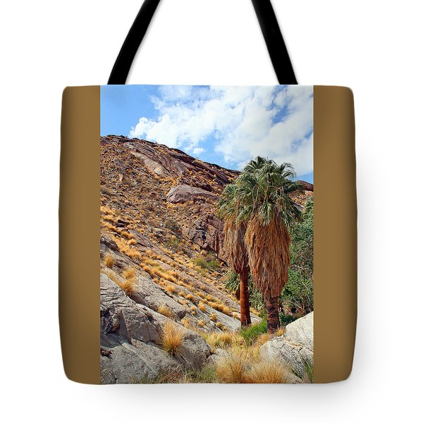 Indian Canyons View With Two Palms Tote Bag by Ben and Raisa Gertsberg