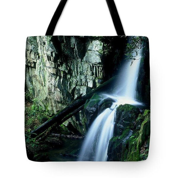 Indian Falls Tote Bag