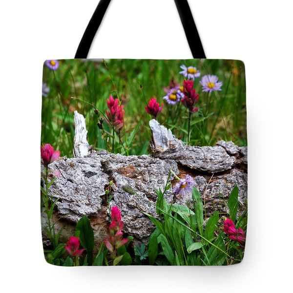 Tote Bag featuring the photograph Indian Paintbrush by Ronda Kimbrow