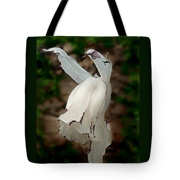 Tote Bag featuring the photograph Indian Pipe by William Tanneberger