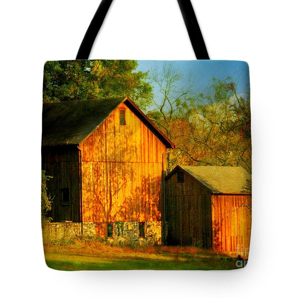 Indian Summer In October Tote Bag