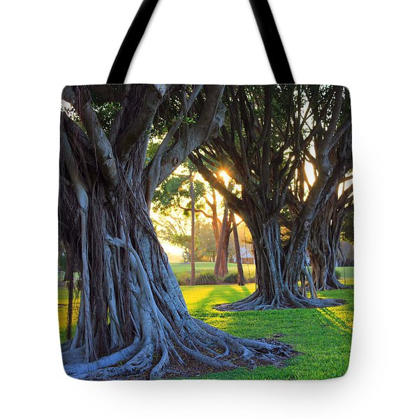 Indian Sunset Tote Bag