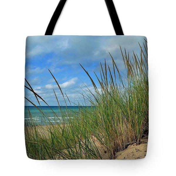 Indiana Dunes Sea Oats Tote Bag