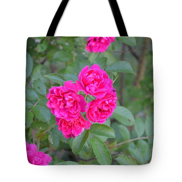 Indiana Roses Tote Bag by Alys Caviness-Gober