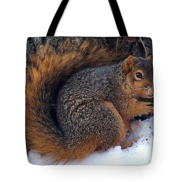 Indiana Squirrel In Winter With Nut Tote Bag