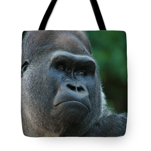 Tote Bag featuring the photograph Indifference by Judy Whitton
