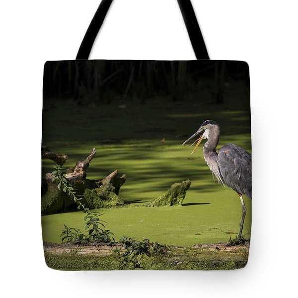 Tote Bag featuring the photograph Indigestion by Windy Corduroy
