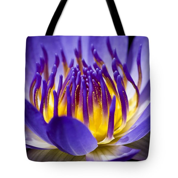 Tote Bag featuring the photograph Inner Glow by Priya Ghose