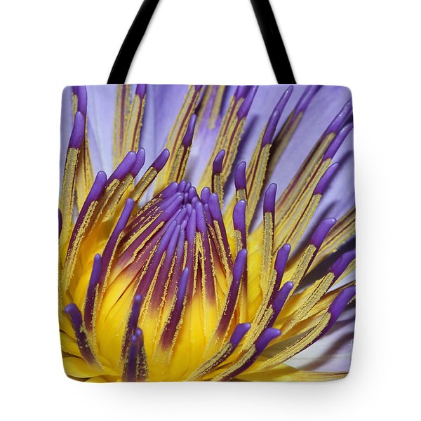 Tote Bag featuring the photograph Inner Sanctum by Judy Whitton