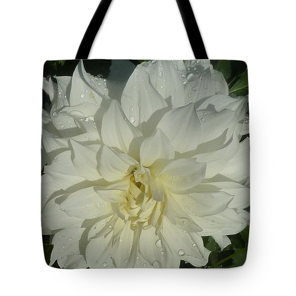 Tote Bag featuring the photograph Innocent White Dahlia  by Susan Garren