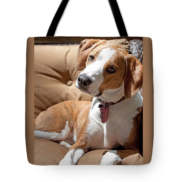 Inquisitive Tote Bag by Jean Haynes