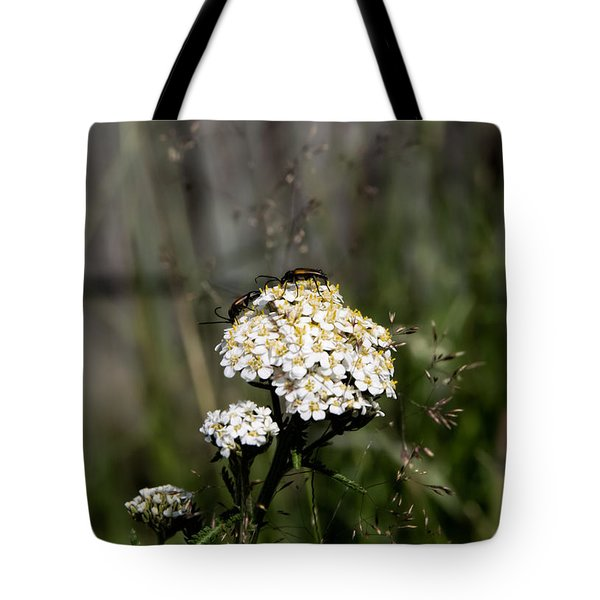Tote Bag featuring the photograph Insect On White Flower by Leif Sohlman