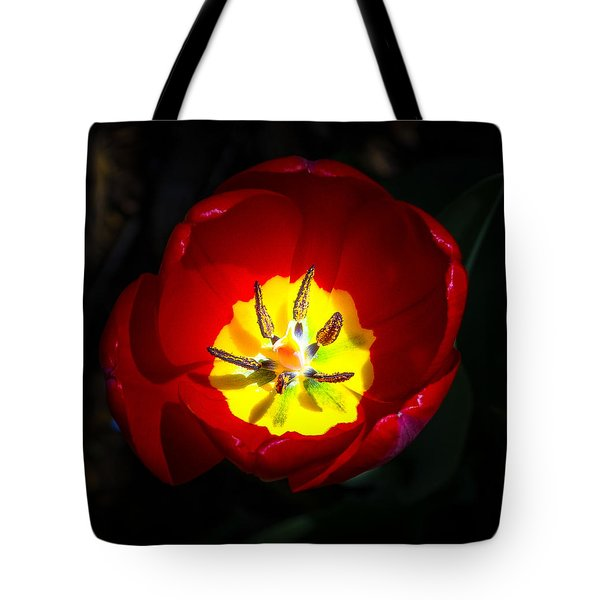 Inside A Tulip Tote Bag