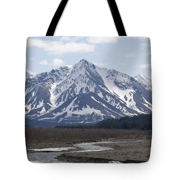 Inside Denali National Park 4 Tote Bag