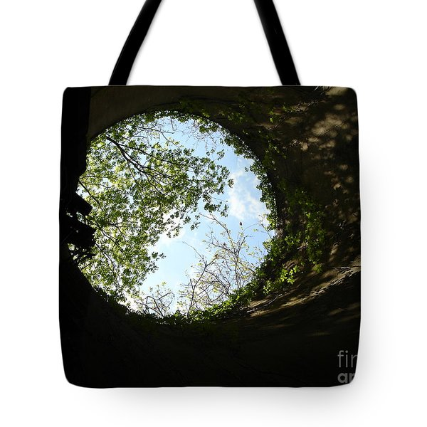 Tote Bag featuring the photograph Inside The Silo by Jane Ford