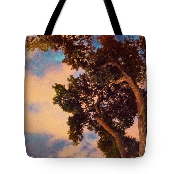 Inspired By Maxfield Parrish Tote Bag