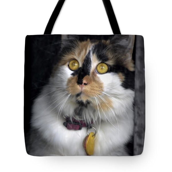 Intense Cleo Tote Bag by Michael Frank Jr
