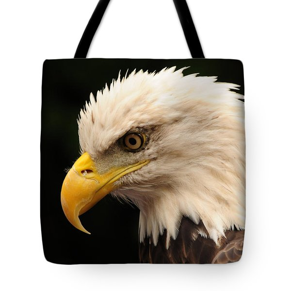 Intense Stare Tote Bag by Mike Martin