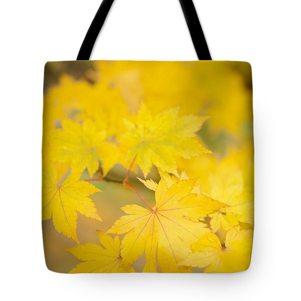 Intensely Yellow Tote Bag by Anne Gilbert