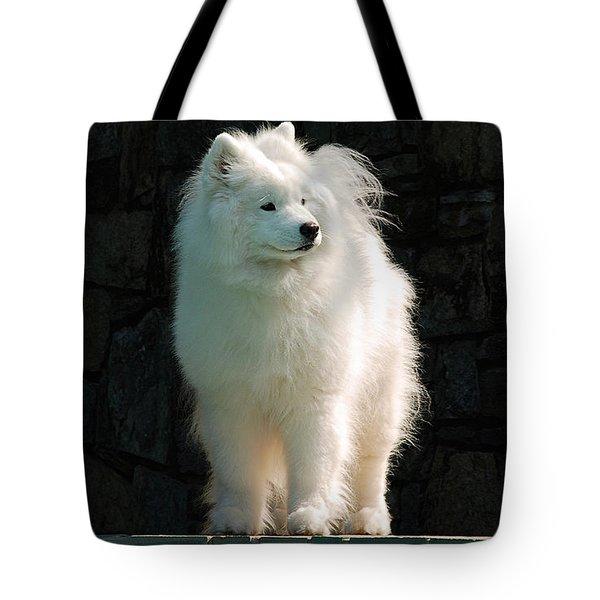 Intent Tote Bag
