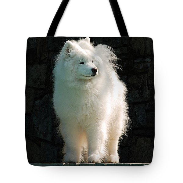 Intent Tote Bag by Lois Bryan