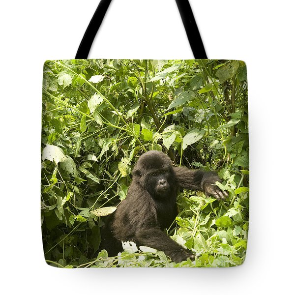 Tote Bag featuring the photograph Into The Light by Liz Leyden