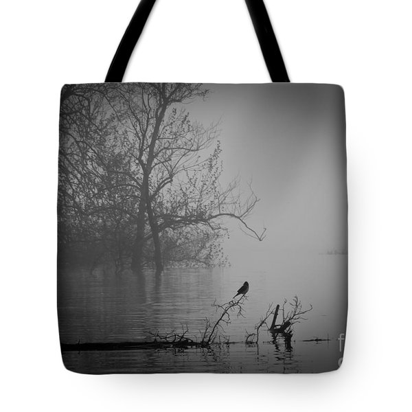 Into The Soup Tote Bag by Douglas Stucky