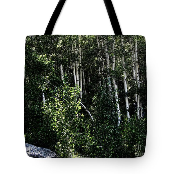 Into The Woods Tote Bag by Bedros Awak