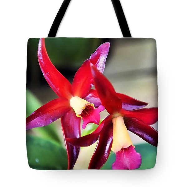 Intrageneric Brassia Hybrid Orchid Tote Bag by Chris Flees