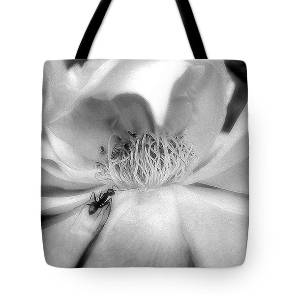 Intrigue Rose In Black And White Tote Bag by Louise Kumpf