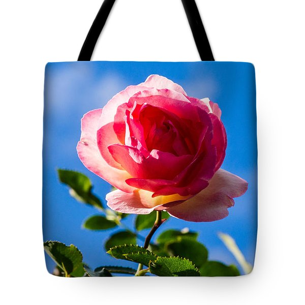 iPhone Case - Pink Rose Tote Bag