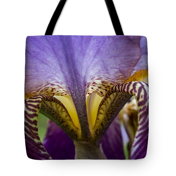 Tote Bag featuring the photograph Iris Abstract by Glenn DiPaola