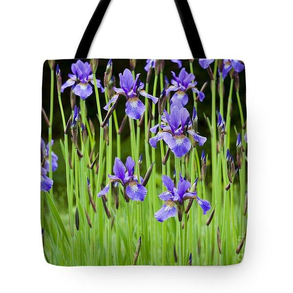 Iris Garden Tote Bag