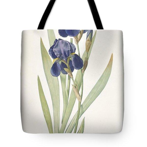 Iris Germanica Bearded Iris Tote Bag
