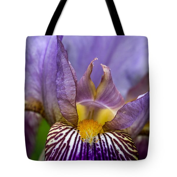Tote Bag featuring the photograph Iris Glow by Glenn DiPaola