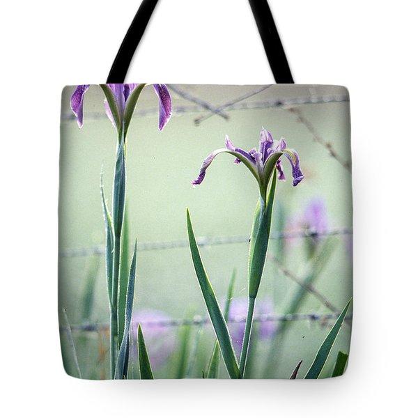 Irises2 Tote Bag