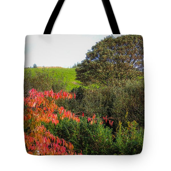 Irish Autumn Countryside Tote Bag