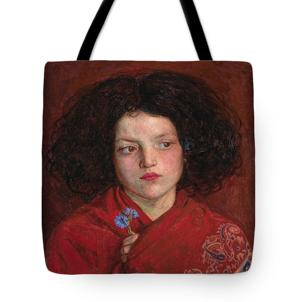 Irish Girl Tote Bag by Philip Ralley